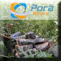 2 toneladas de maconha apreendidas na fronteira - Porã News