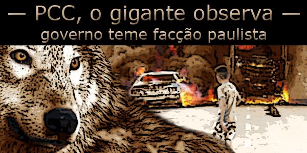 Lobo e menino observam veículos em chamas durante ataques de facções criminosas ao governo do Ceará.